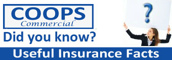 Useful Insurance Facts